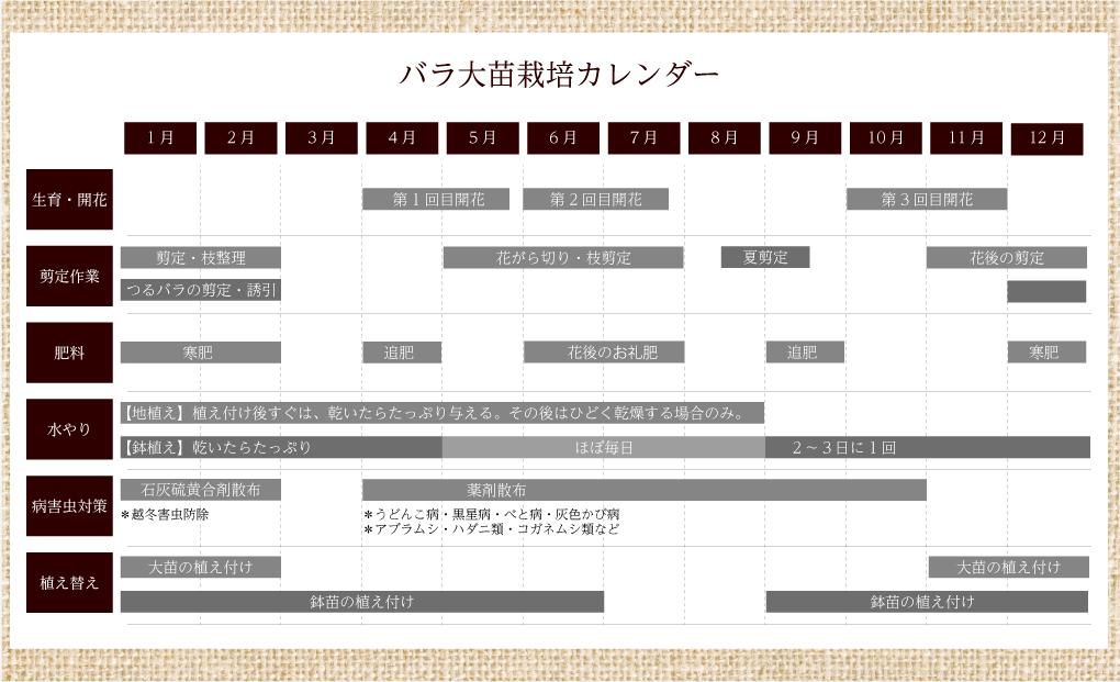 バラ大苗栽培カレンダー