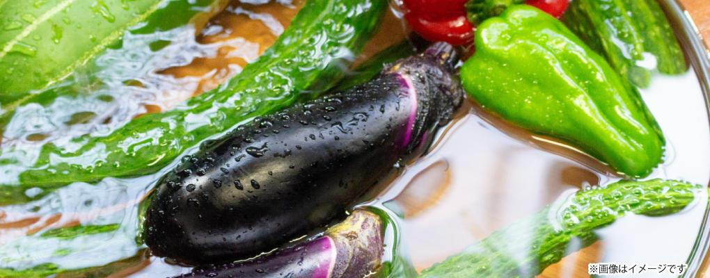 新鮮夏野菜朝市