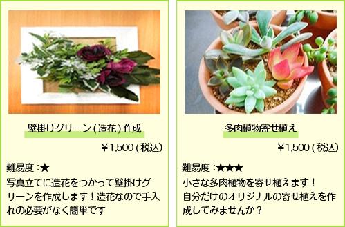 壁掛けグリーン_多肉植物寄せ植え